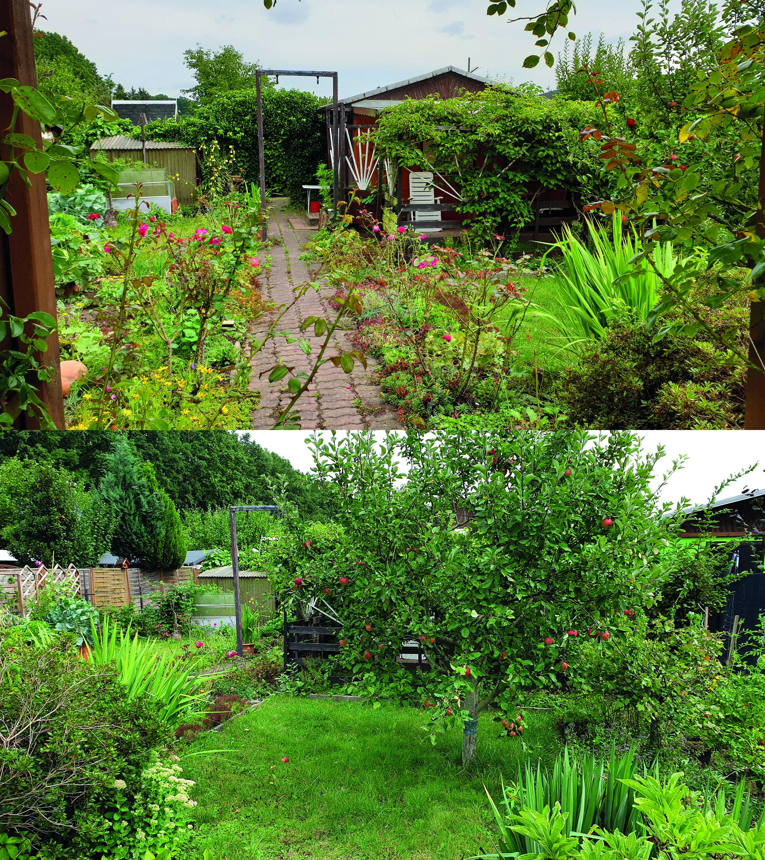 Garten 189